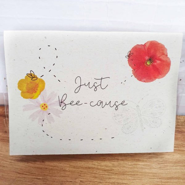 Irish Wildflower Seed Gift Card 'Just Bee-Cause' - 20210219 165707 01 scaled 1