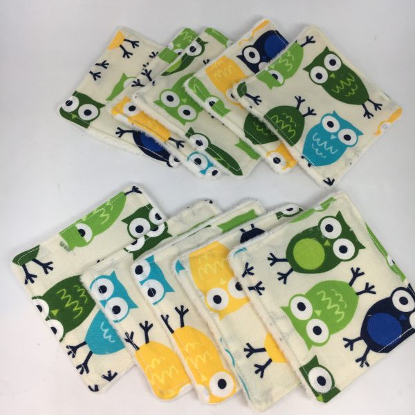Reusable Wipes Owl (Bright) - CD031CC7 3625 419C 896F 458569FCC564 rotated