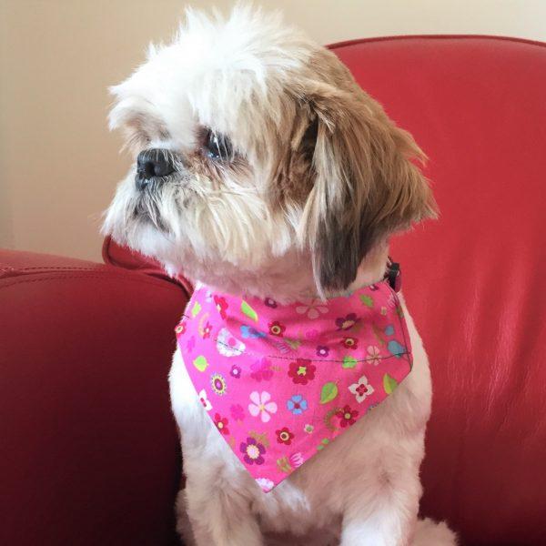 Dog Bandana Sweet Pink Floral