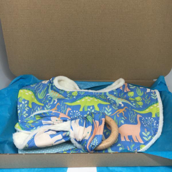 Baby Gift Set Dinosaurs - 82D6426F D52E 482F A25B A2992CBBD2C3 scaled