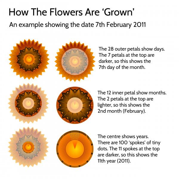 elevencorners personalised family flowers print