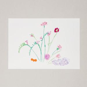 Lilac Blooms A3 Print