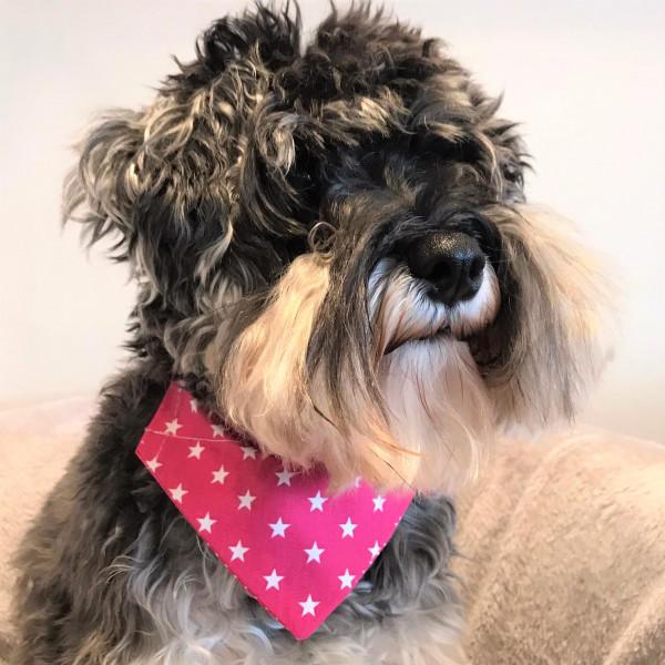 Dog Bandana Pretty Pink Stars by Woof Stuff Dublin Ireland