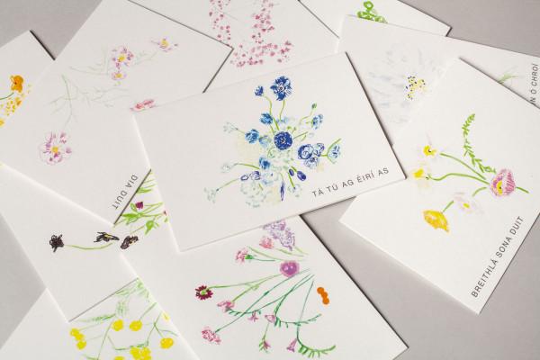 10 Pack Summer Flora Irish Greeting Cards - IMG 8902