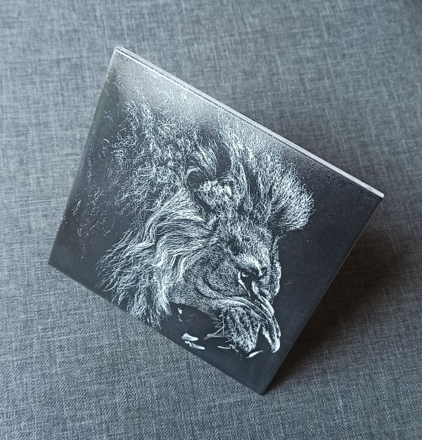 A Lion Head Engraved on Ceramic Tile - IMG 20210730 1704212