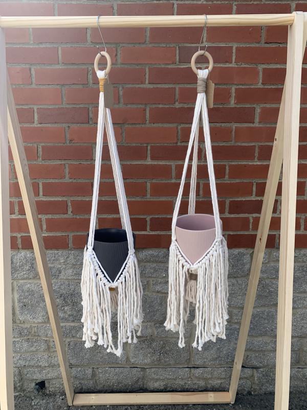 Fringe Plant Hanger - IMG 9942 scaled