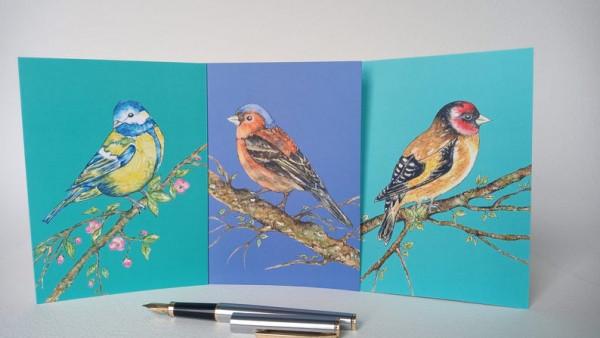 Set of 6 Bird Notecards