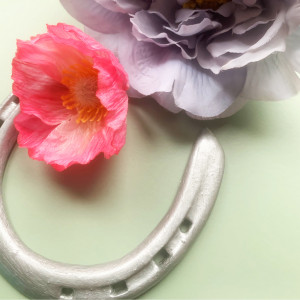 Good Luck Horse Shoe Charm for your Pocket