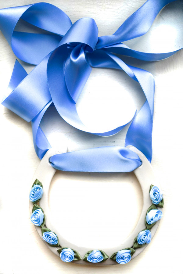 Blue Good Luck Horse Shoe