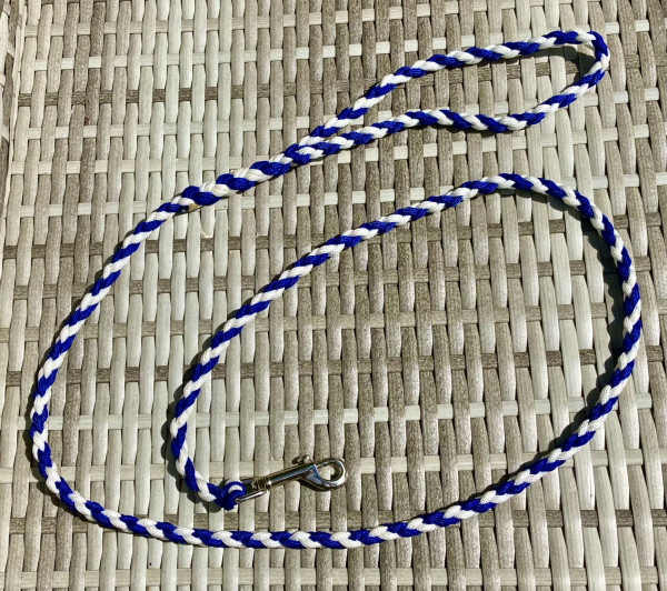 Dog Lead Braided Paracord Blue and White - IMG 5825