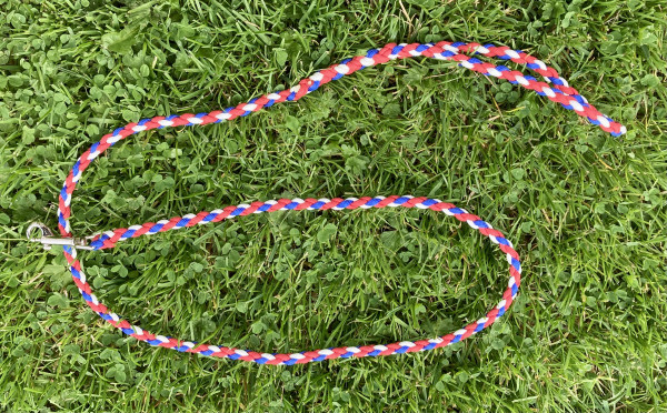 Dog Lead, Braided Paracord Red White & Blue - IMG 5836 scaled