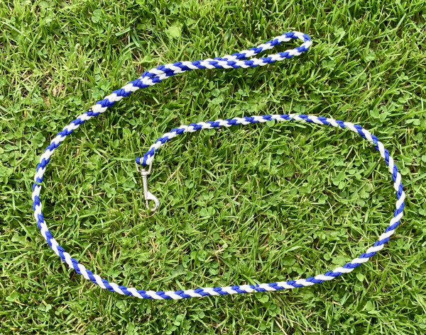 Dog Lead Braided Paracord Blue and White - IMG 5843