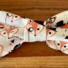 Dog Bow Tie, Inspector Fox - IMG 5877