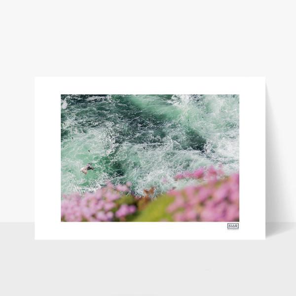 Birds Eye View - A4 Print