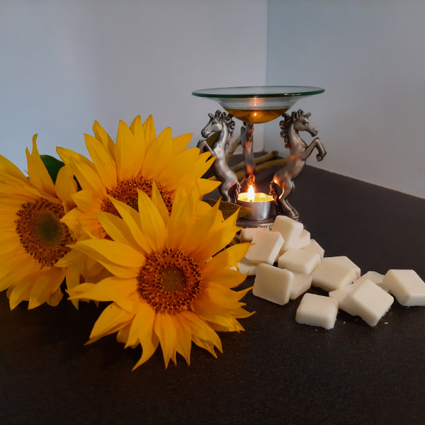 Wax Melts infused with Essential Oils - Lumii 20210912 141413023 scaled