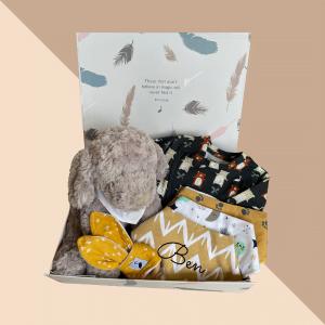 Ultimate Baby Boy Gift Box