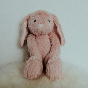 Personalised Pink Bunny Teddy